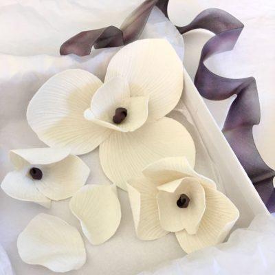 Coffret de Nympheas Dai Ceramic